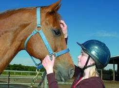 Image for SMILES (Special Methods in Learning Equine Skills)